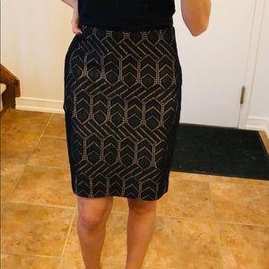 Ann Taylor Petite Skirt